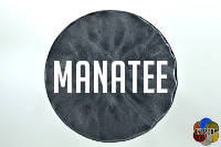 Manatee from the grays of EZ-Marble colors
